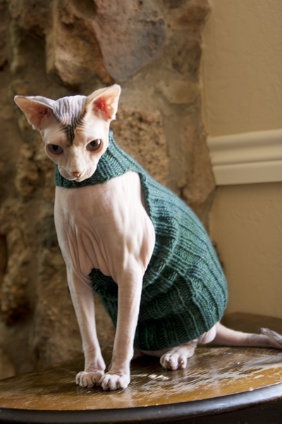 sphynx sweater knitting pattern 1